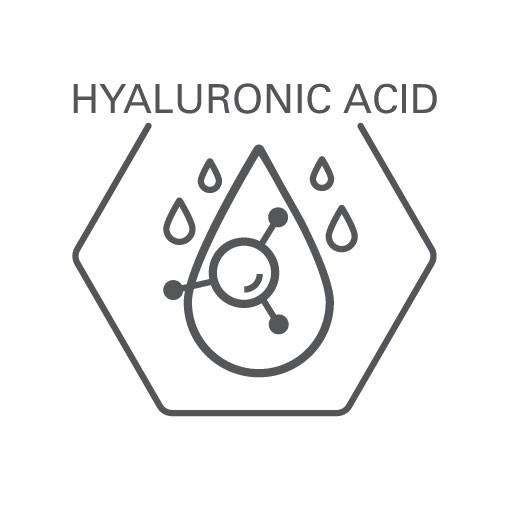 Dermacosmetics-icon-hyaluronic-acid-Web-Rendition