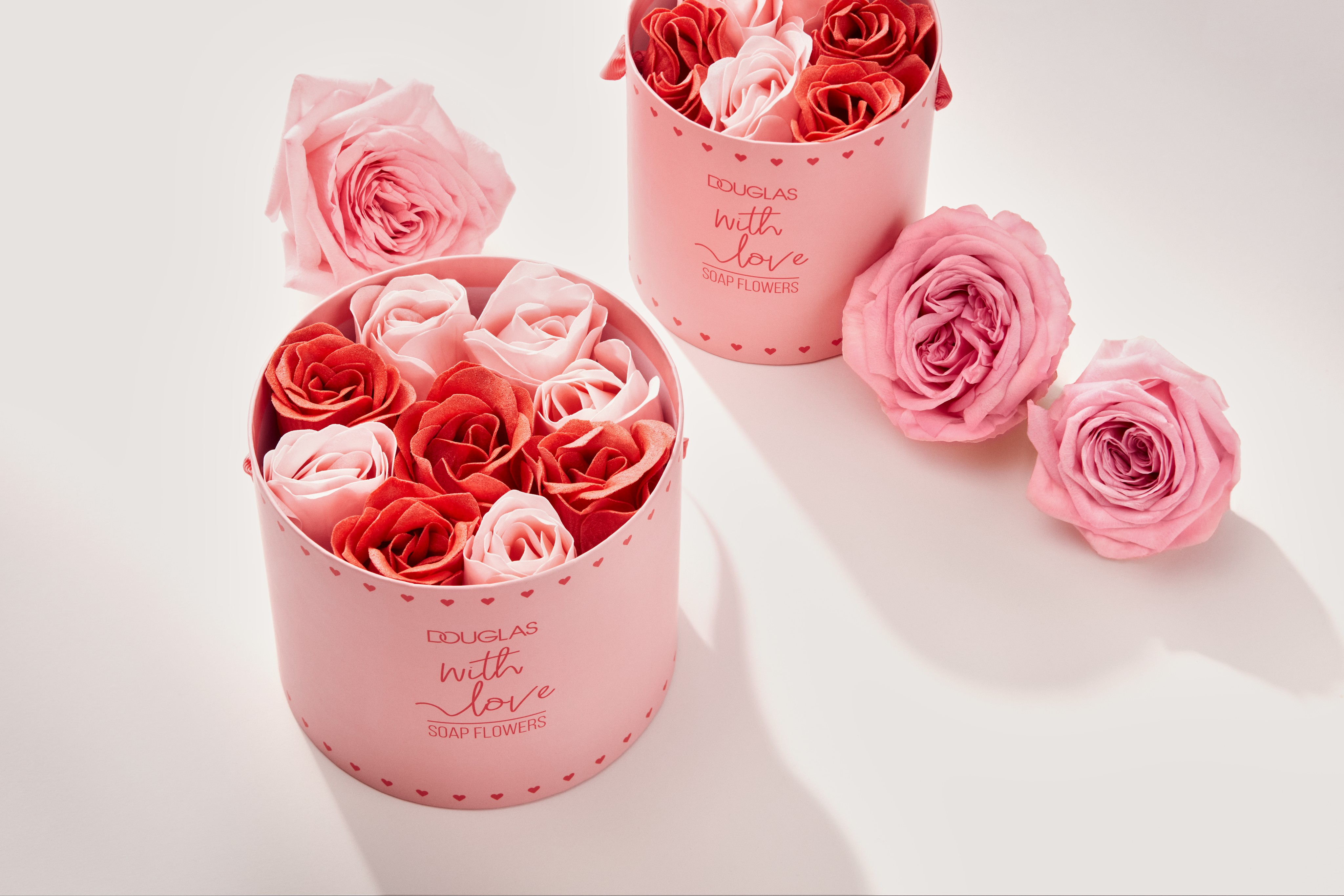 Seasonals-product-dc-flower-boxes-pink-white-floor-unlimited-Web-Rendition