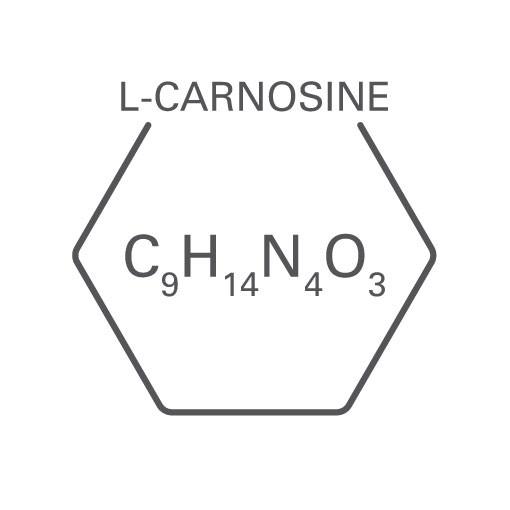 Dermacosmetics-icon-l-carnosine-Web-Rendition